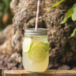 Zitronen-Limetten Limonad