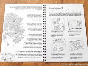 Blättersammelbuch- So wird es gemacht!