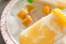 Mango-Ananas-Joghurt-Eis